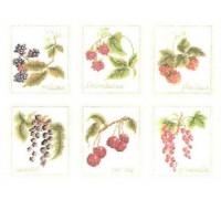 Six Fruits Sampler