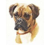 Boxer Dog Cross Stitch
