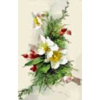 Christmas Rose UNK015