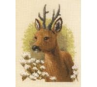Deer Portrait - 2002\75.072