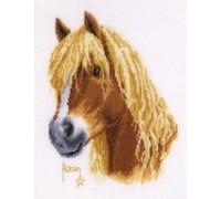 Francien's Horse - 2002\70.036