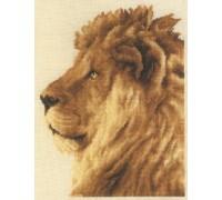 Lion Portrait - 2002\75.070