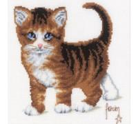 Tabby Kitten - 2002\70.084