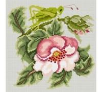 Rose Garden Grasshopper - Pastel