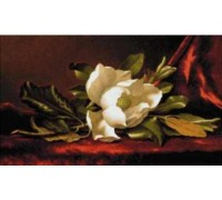 Magnolia Flower by Heade - Chart or Kit
