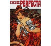 Perfecta Cycles 1902 - Chart or Kit