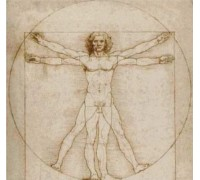 Vitruvian Man - Chart or Kit
