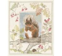 Red Squirrel by Derwentwater - WIL4